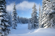 station ski saint l�ger sejour